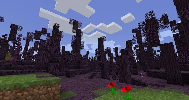 RLCraft Biomes