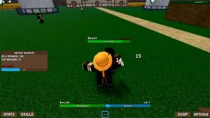 Project: One Piece Roblox