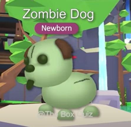adopt-me-halloween-pet-concept-ideas-2021